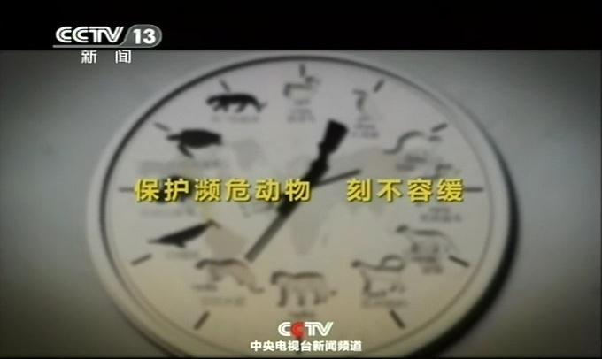 央视公益广告_保护濒危动物 刻不容缓